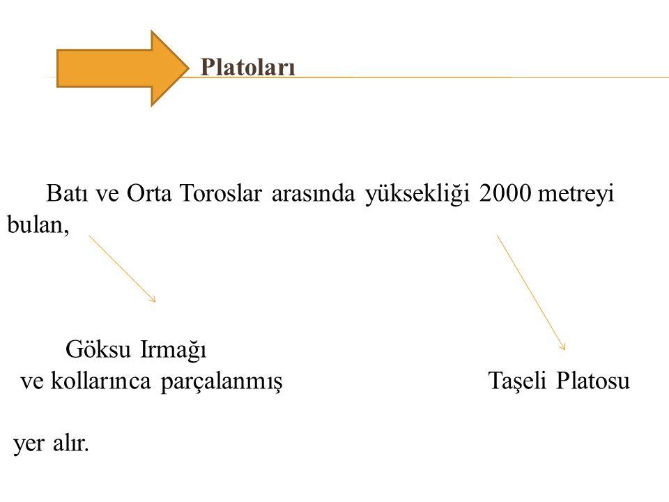 Antalya Bölümü'nde Dalaman, Aksu, Köprüçay ve Manavgat çayları, Adana Bölümü'nde ise Göksu, Seyhan, Ceyhan ve Asi ırmakları önemli ırmaklarıdır.