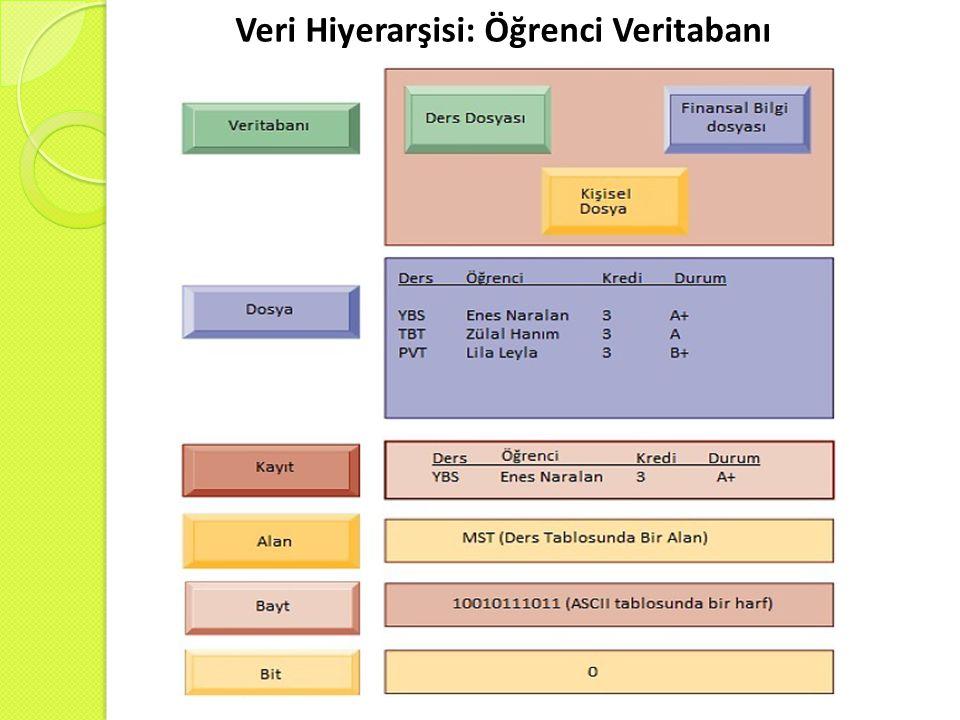 Sorgulama ve Raporlama VTYS, bünyesinde veri tabanındaki enformasyona erişim ve yönlendirme araçlarını içerir.