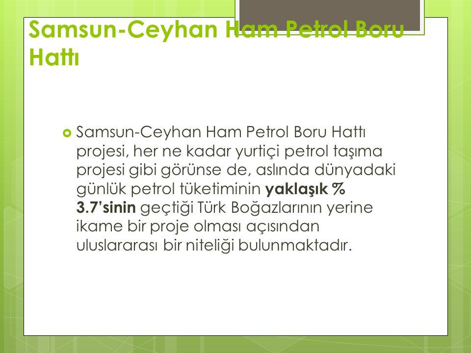 Samsun-Ceyhan Ham Petrol Boru Hattı  Samsun-Ceyhan Ham Petrol Boru Hattı projesi, her ne kadar yurtiçi petrol taşıma projesi gibi görünse de, aslında dünyadaki günlük petrol tüketiminin yaklaşık % 3.7'sinin geçtiği Türk Boğazlarının yerine ikame bir proje olması açısından uluslararası bir niteliği bulunmaktadır.