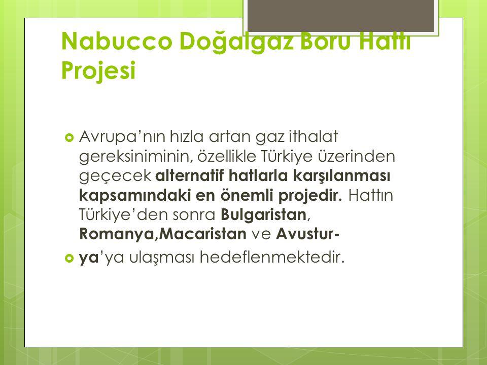 Nabucco Doğalgaz Boru Hattı Projesi  Avrupa'nın hızla artan gaz ithalat gereksiniminin, özellikle Türkiye üzerinden geçecek alternatif hatlarla karşılanması kapsamındaki en önemli projedir.