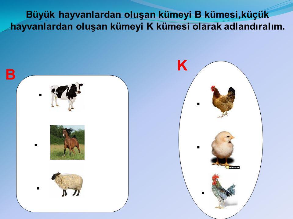 Büyük hayvanların yanında ezilebilirim Ali Baba küçük hayvanların farklı kapalı şekillerde barınmasını sağla!!