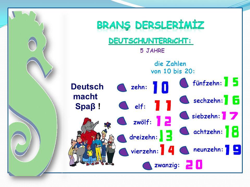 5 JAHRE Deutsch macht Spaβ ! die Zahlen von 10 bis 20: elf: zehn: vierzehn: dreizehn: zwölf: sechzehn: siebzehn: achtzehn: neunzehn: fünfzehn: zwanzig