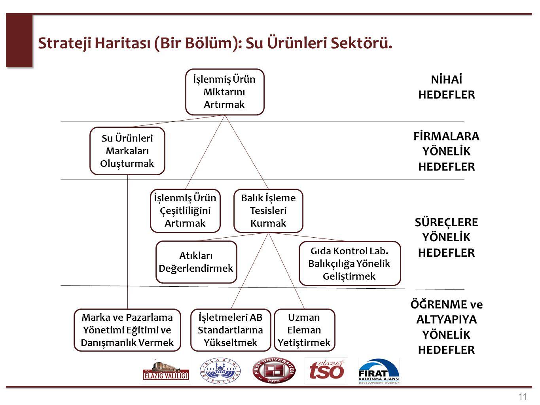 Strateji Haritası (Bir Bölüm): Su Ürünleri Sektörü. 11 Balık İşleme Tesisleri Kurmak Gıda Kontrol Lab. Balıkçılığa Yönelik Geliştirmek İşlenmiş Ürün Ç