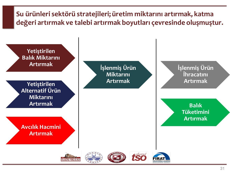 31 Su ürünleri sektörü stratejileri; üretim miktarını artırmak, katma değeri artırmak ve talebi artırmak boyutları çevresinde oluşmuştur. Yetiştirilen
