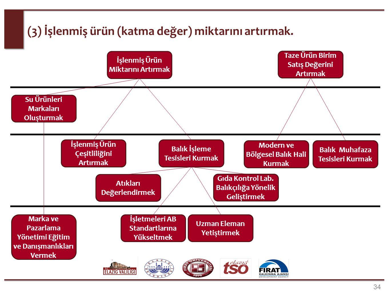 34 (3) İşlenmiş ürün (katma değer) miktarını artırmak. Balık İşleme Tesisleri Kurmak Balık Muhafaza Tesisleri Kurmak Modern ve Bölgesel Balık Hali Kur