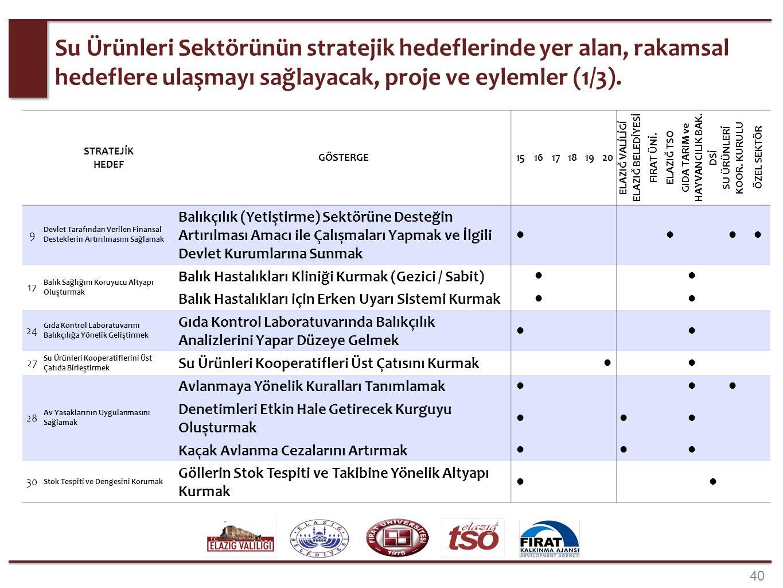 40 Su Ürünleri Sektörünün stratejik hedeflerinde yer alan, rakamsal hedeflere ulaşmayı sağlayacak, proje ve eylemler (1/3). STRATEJİK HEDEF GÖSTERGE15