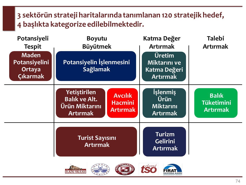 74 3 sektörün strateji haritalarında tanımlanan 120 stratejik hedef, 4 başlıkta kategorize edilebilmektedir. Maden Potansiyelini Ortaya Çıkarmak Potan