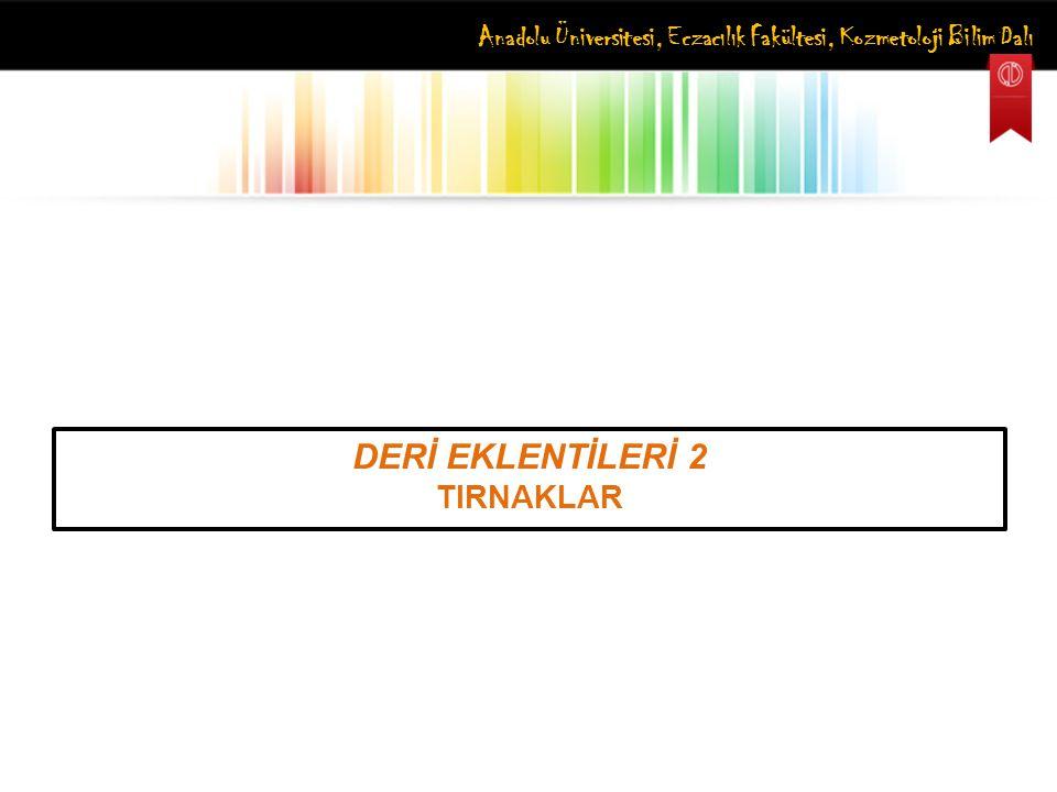 Anadolu Üniversitesi, Eczacılık Fakültesi, Kozmetoloji Bilim Dalı DERİ EKLENTİLERİ 2 TIRNAKLAR