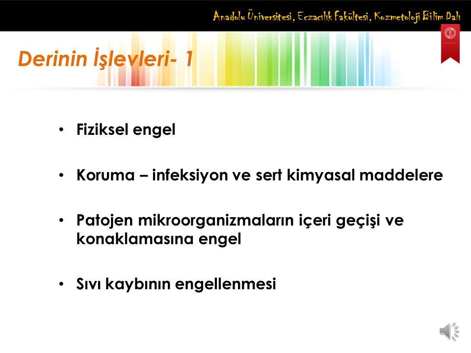 Anadolu Üniversitesi, Eczacılık Fakültesi, Kozmetoloji Bilim Dalı 1.