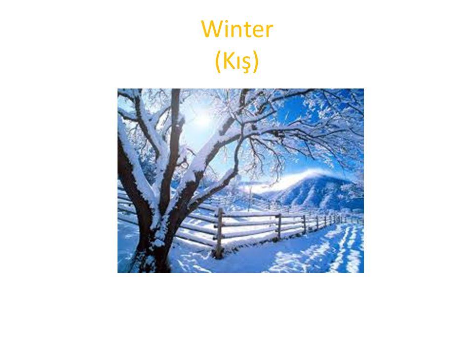 Winter (Kış)