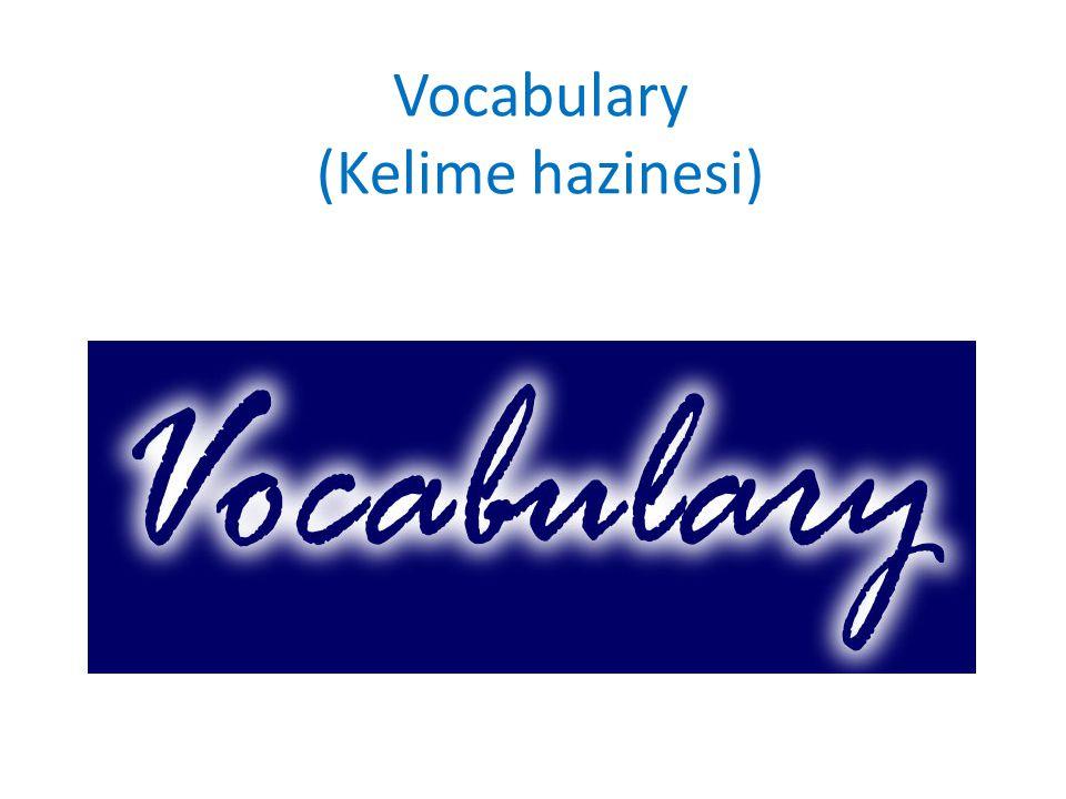 Vocabulary (Kelime hazinesi)