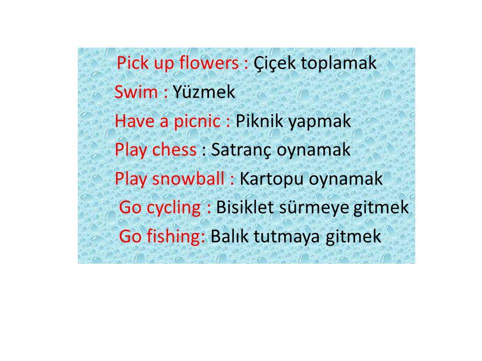 Pick up flowers : Çiçek toplamak Swim : Yüzmek Have a picnic : Piknik yapmak Play chess : Satranç oynamak Play snowball : Kartopu oynamak Go cycling :
