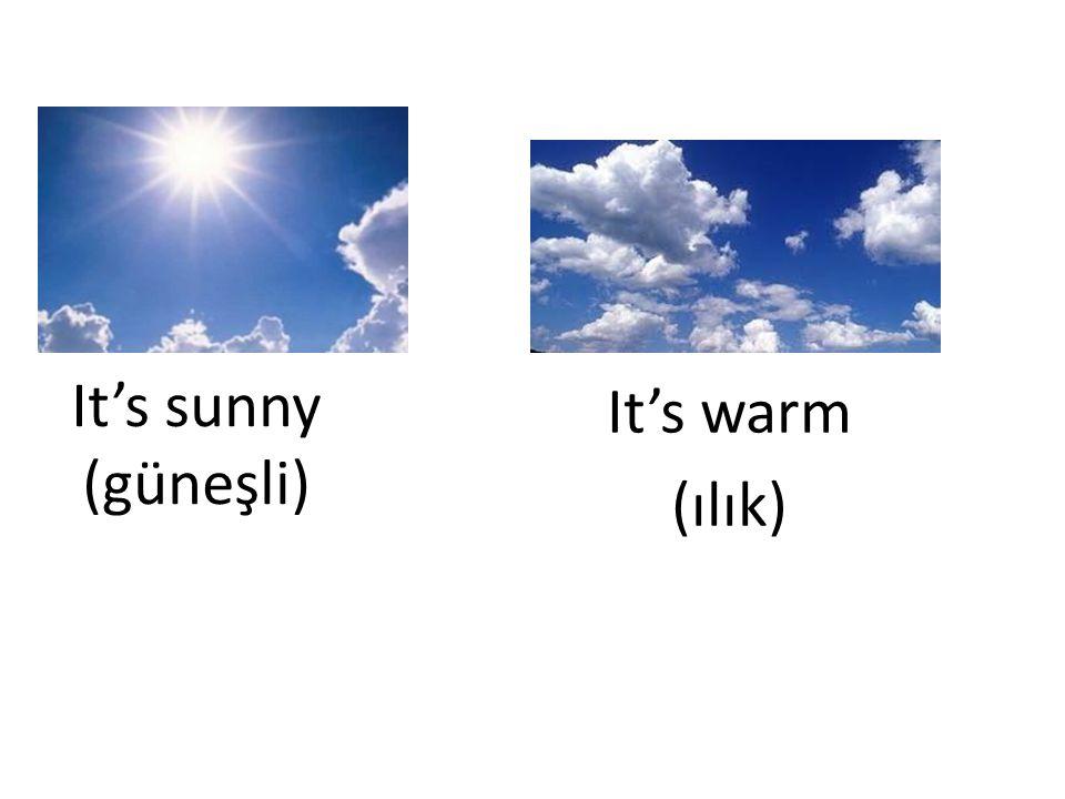 Seasons (Mevsimler)