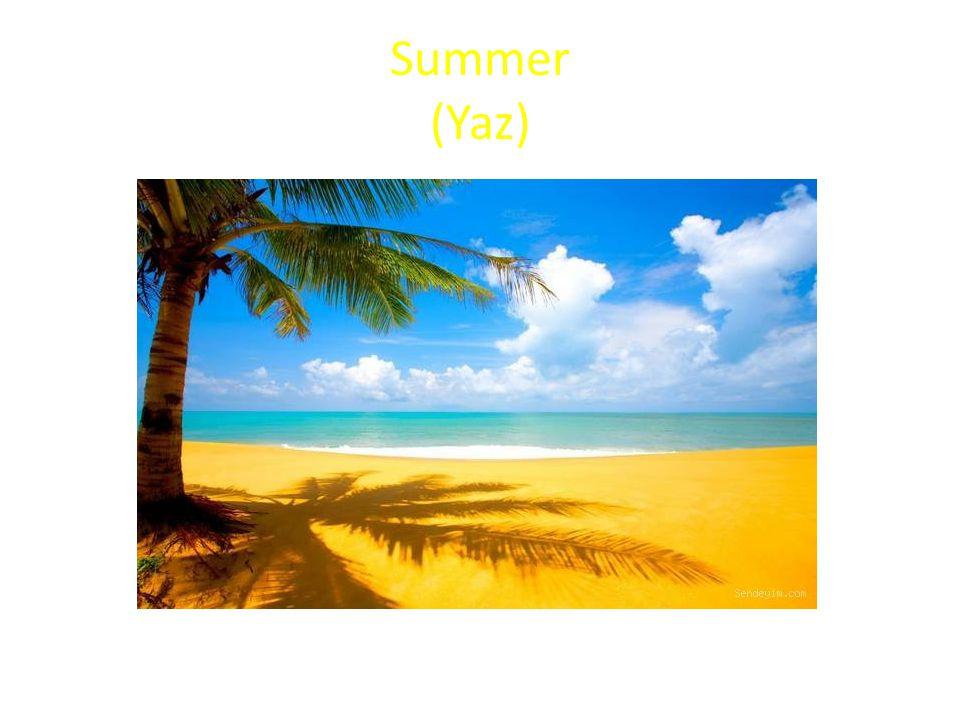 Summer (Yaz)