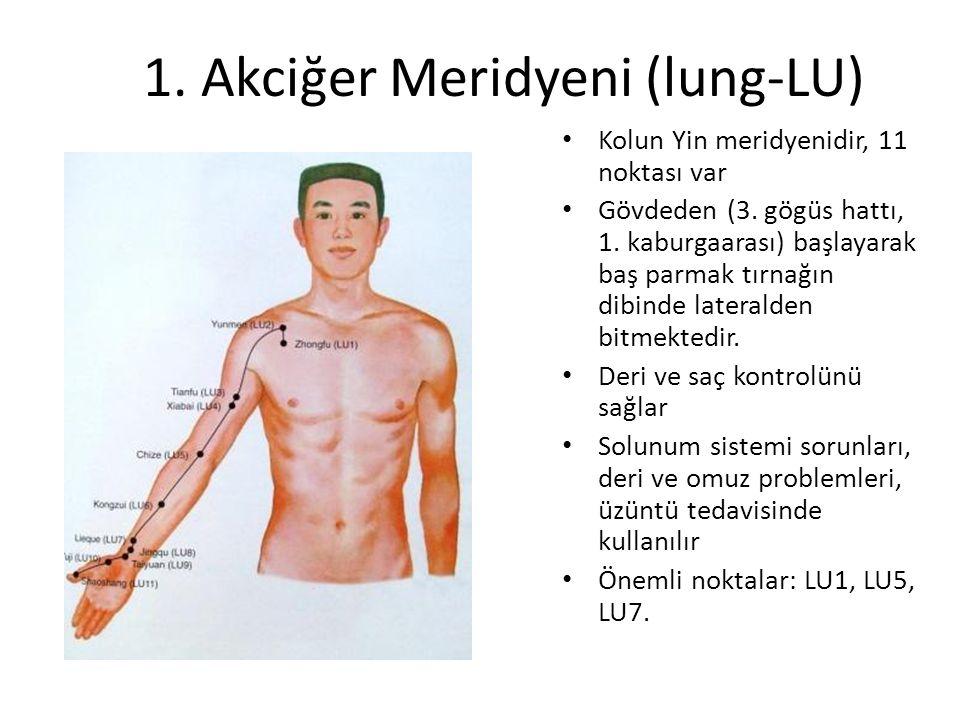 1. Akciğer Meridyeni (lung-LU) Kolun Yin meridyenidir, 11 noktası var Gövdeden (3. gögüs hattı, 1. kaburgaarası) başlayarak baş parmak tırnağın dibind