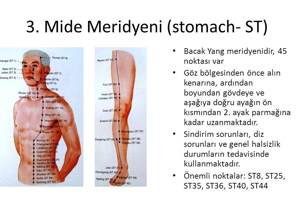 3. Mide Meridyeni (stomach- ST) Bacak Yang meridyenidir, 45 noktası var Göz bölgesinden önce alın kenarına, ardından boyundan gövdeye ve aşağıya doğru