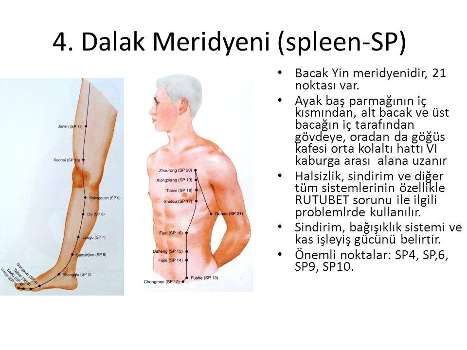 4. Dalak Meridyeni (spleen-SP) Bacak Yin meridyenidir, 21 noktası var. Ayak baş parmağının iç kısmından, alt bacak ve üst bacağın iç tarafından gövdey