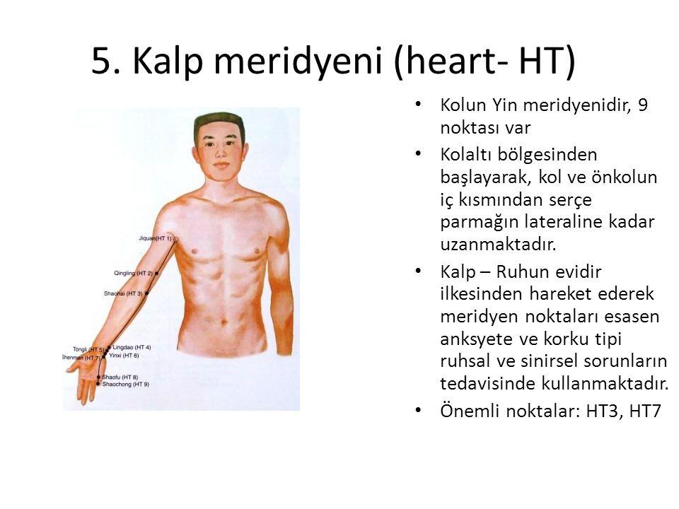 5. Kalp meridyeni (heart- HT) Kolun Yin meridyenidir, 9 noktası var Kolaltı bölgesinden başlayarak, kol ve önkolun iç kısmından serçe parmağın lateral