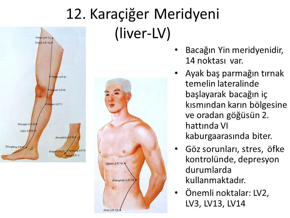 12. Karaçiğer Meridyeni (liver-LV) Bacağın Yin meridyenidir, 14 noktası var. Ayak baş parmağın tırnak temelin lateralinde başlayarak bacağın iç kısmın