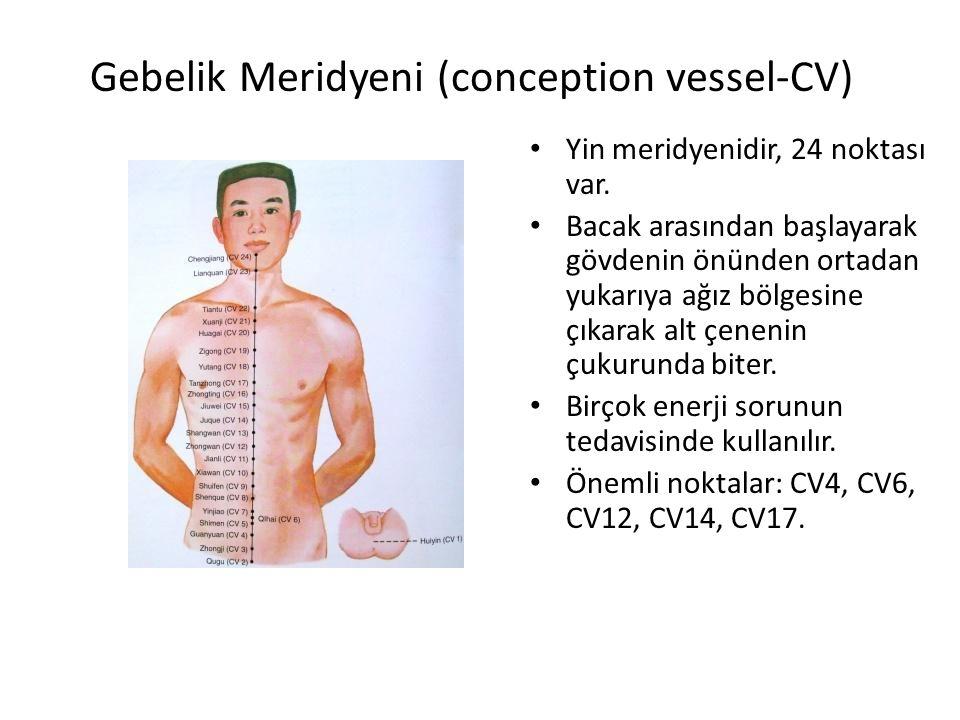 Gebelik Meridyeni (conception vessel-CV) Yin meridyenidir, 24 noktası var. Bacak arasından başlayarak gövdenin önünden ortadan yukarıya ağız bölgesine