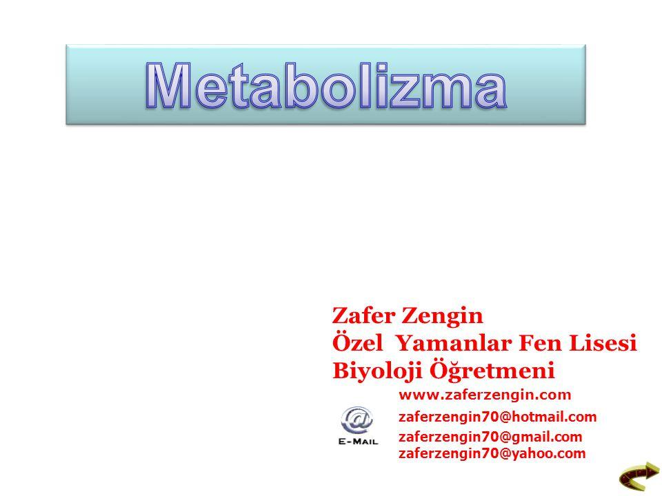 Metabolizma: Canlılarda meydana gelen yapım, yıkım ve dönüşüm olaylarının tümüne birden Metabolizma denir.