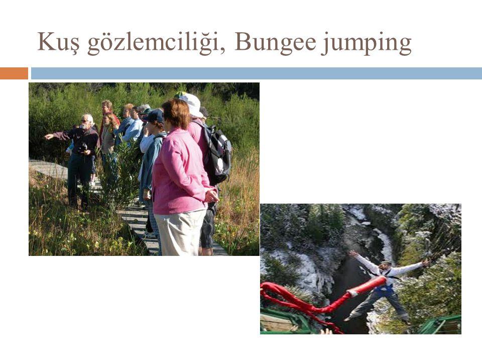 Kuş gözlemciliği, Bungee jumping