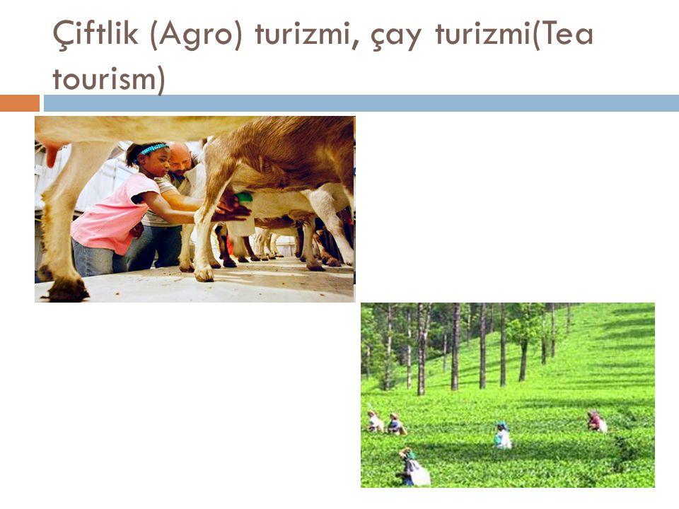 Çiftlik (Agro) turizmi, çay turizmi(Tea tourism)