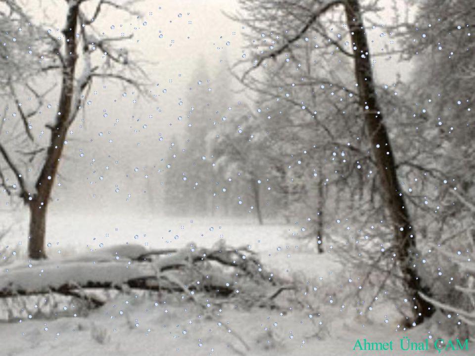 ÇİÇEK Bir şiir okudum Şair; -Kar çiçekleri kadar güzelsin. demiş sevdiğine.