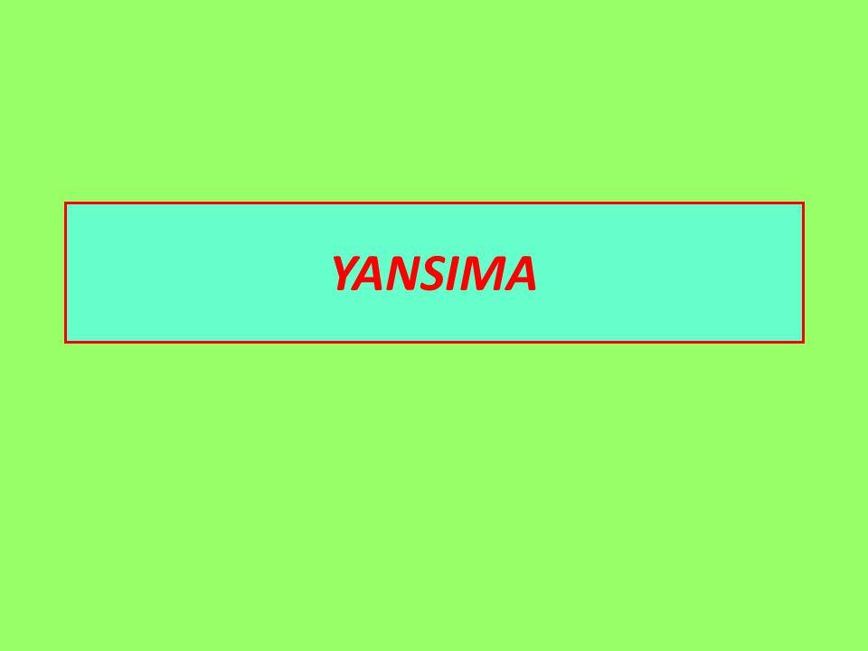 YANSIMA