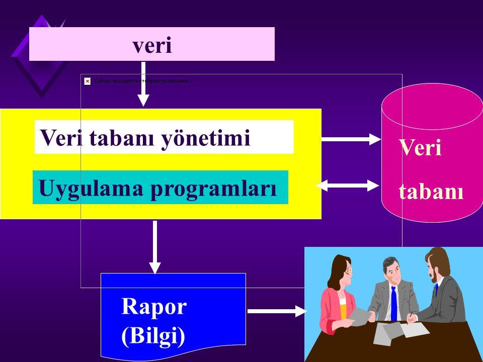 Veri tabanının ögeleri u Veri tabanı dosyaları u Veri tabanı yönetim sistemi u Uygulama programları u Çıktı sistemleri ve raporlama.