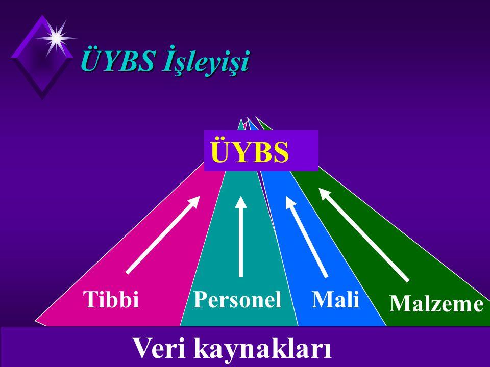 Üst yönetim bilgi sistemi u Üst düzey yöneticilerin belirli bir konuya özgü, bilgi gereksinmelerini karşılamak için tasarlanan sistemlerdir. Üst yönet