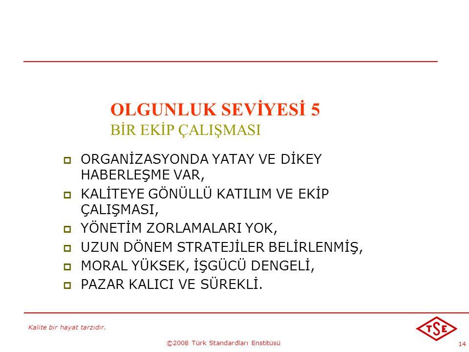 Kalite bir hayat tarzıdır. ©2008 Türk Standardları Enstitüsü 14 KALİTE GELECEKTİR !...-5 OLGUNLUK SEVİYESİ 5 BİR EKİP ÇALIŞMASI  ORGANİZASYONDA YATAY