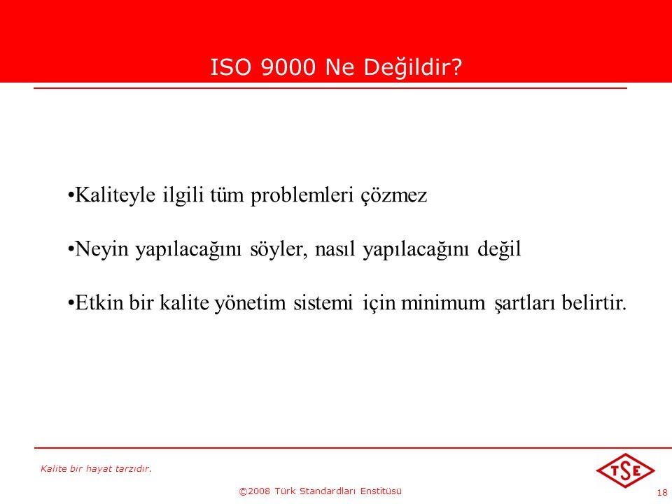 Kalite bir hayat tarzıdır. ©2008 Türk Standardları Enstitüsü 18 ISO 9000 Ne Değildir? Kaliteyle ilgili tüm problemleri çözmez Neyin yapılacağını söyle