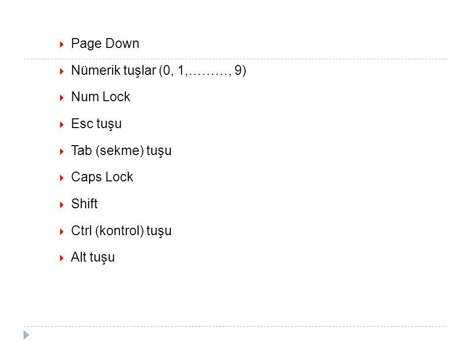 Page Down  Nümerik tuşlar (0, 1,………, 9)  Num Lock  Esc tuşu  Tab (sekme) tuşu  Caps Lock  Shift  Ctrl (kontrol) tuşu  Alt tuşu