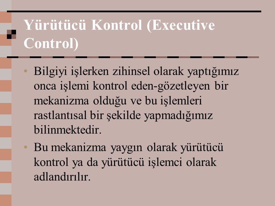Yürütücü Kontrol (Executive Control) Bilgiyi işlerken zihinsel olarak yaptığımız onca işlemi kontrol eden-gözetleyen bir mekanizma olduğu ve bu işleml
