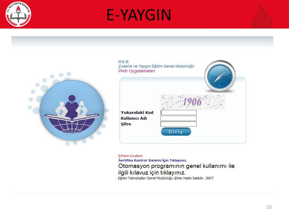 E-YAYGIN 30