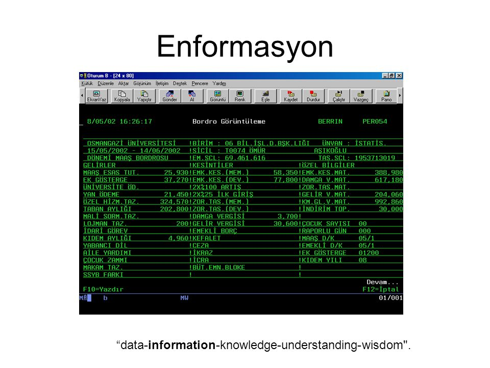 "Enformasyon ""data-information-knowledge-understanding-wisdom"