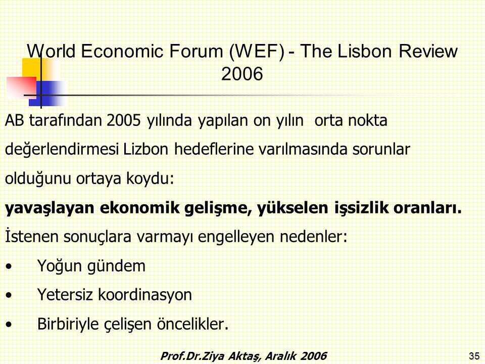35 AB tarafından 2005 yılında yapılan on yılın orta nokta değerlendirmesi Lizbon hedeflerine varılmasında sorunlar olduğunu ortaya koydu: yavaşlayan e