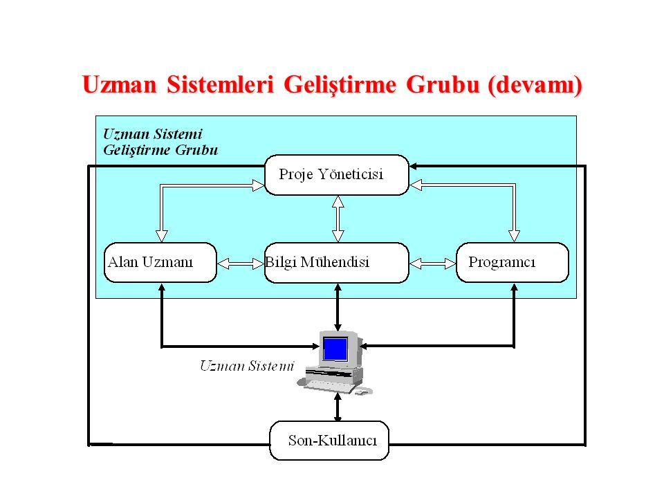Uzman Sistemleri Geliştirme Grubu (devamı)