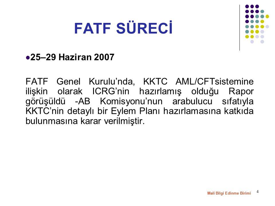 5 8–12 Ekim 2007 tarihlerinde yapılan FATF Genel Kurulu'nda, KKTC tarafından hazırlanan Initial Action Plan , FATF Sekretaryasının, Planı analiz etmek için yeterli zamanı olmadığını ifade etmesi üzerine, AB Komisyonu'nun arabulucu olarak, KKTC'nin 2008 yılı Şubat ayında yapılacak olan Genel Kurul öncesinde Planı nihai hale getirmesine yardımcı olmasına karar verilmiş, ayrıca isteyen ülkelerin de sürece katkı sağlayabileceği belirtilmiştir.