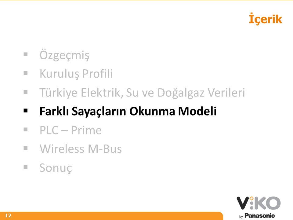 R 242 G 125 B 0 R 153 G 153 B 153 12 İçerik  Özgeçmiş  Kuruluş Profili  Türkiye Elektrik, Su ve Doğalgaz Verileri  Farklı Sayaçların Okunma Modeli