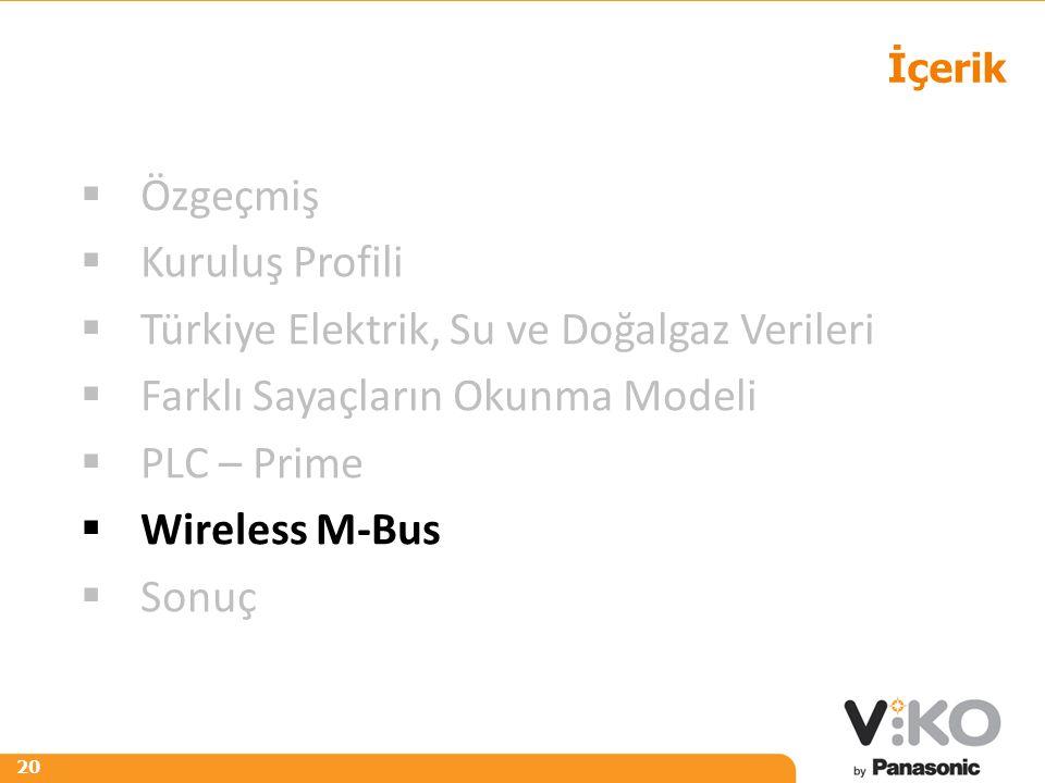 R 242 G 125 B 0 R 153 G 153 B 153 20 İçerik  Özgeçmiş  Kuruluş Profili  Türkiye Elektrik, Su ve Doğalgaz Verileri  Farklı Sayaçların Okunma Modeli