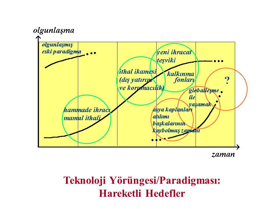 Teknoloji Yörüngesi/Paradigması: Hareketli Hedefler