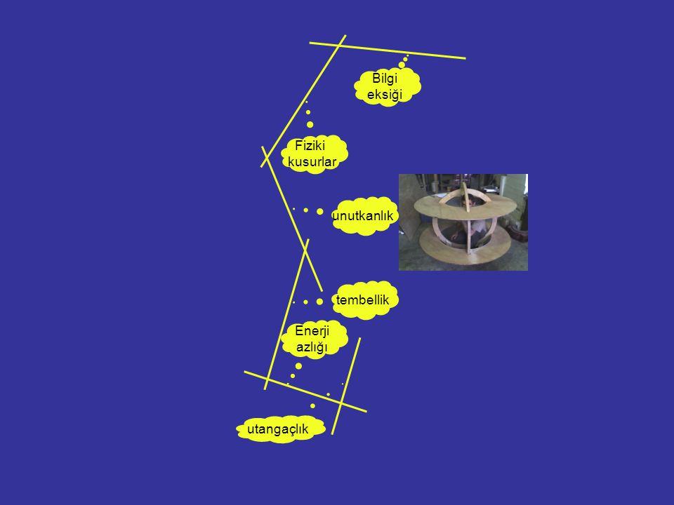 Bilgi eksiği Fiziki kusurlar unutkanlık tembellik Enerji azlığı utangaçlık