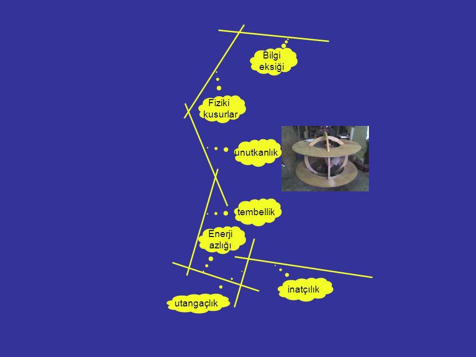 Bilgi eksiği Fiziki kusurlar unutkanlık tembellik Enerji azlığı inatçılık utangaçlık
