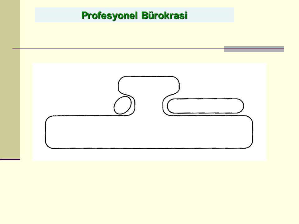 Profesyonel Bürokrasi
