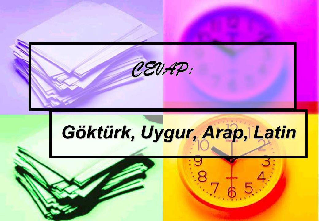 CEVAP: CEVAP: Göktürk, Uygur, Arap, Latin