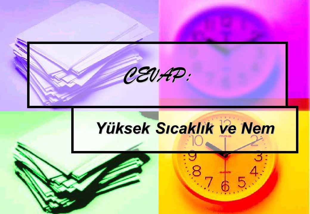 CEVAP: Yüksek Sıcaklık ve Nem