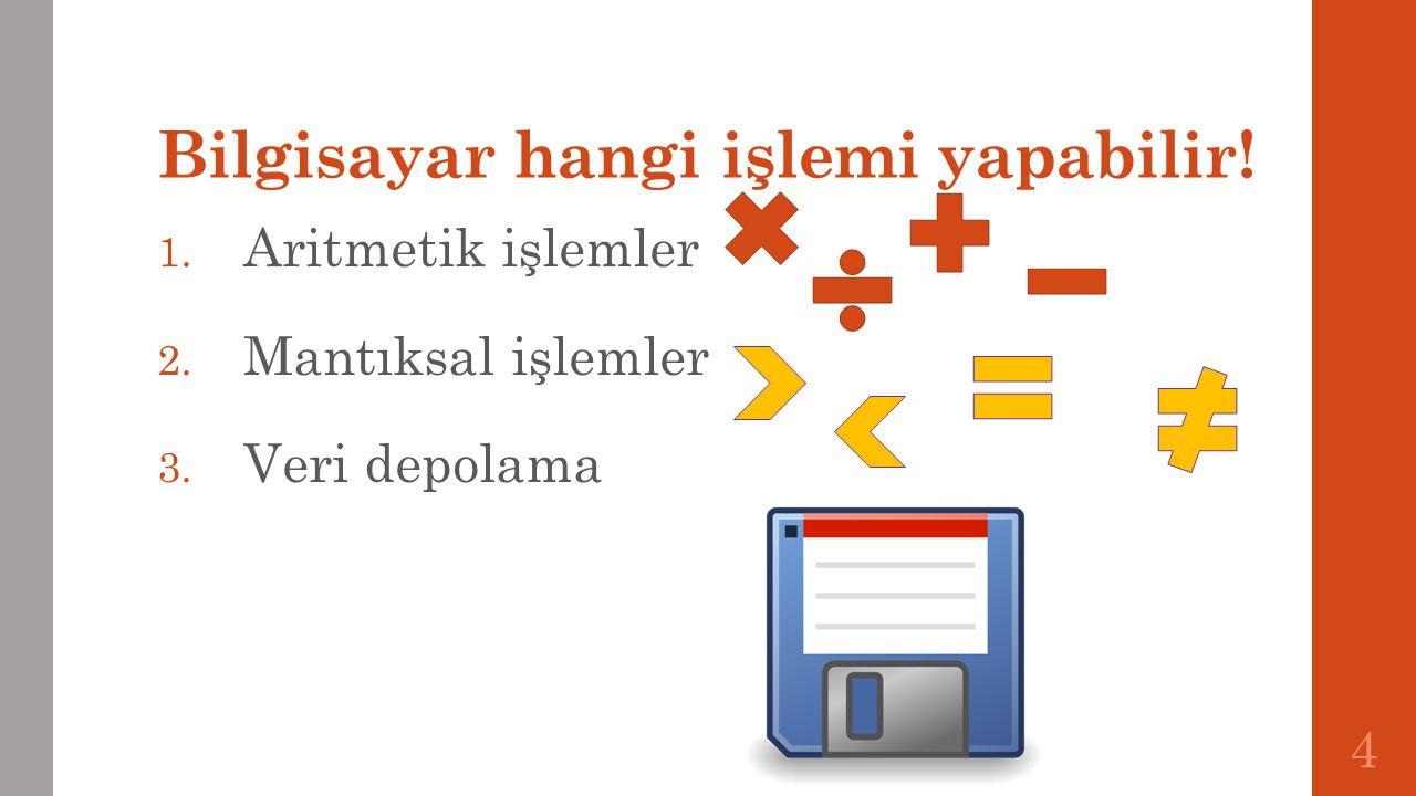 Kullanım Düzeyi 1. Basit kullanıcı 2. İşletmen 3.