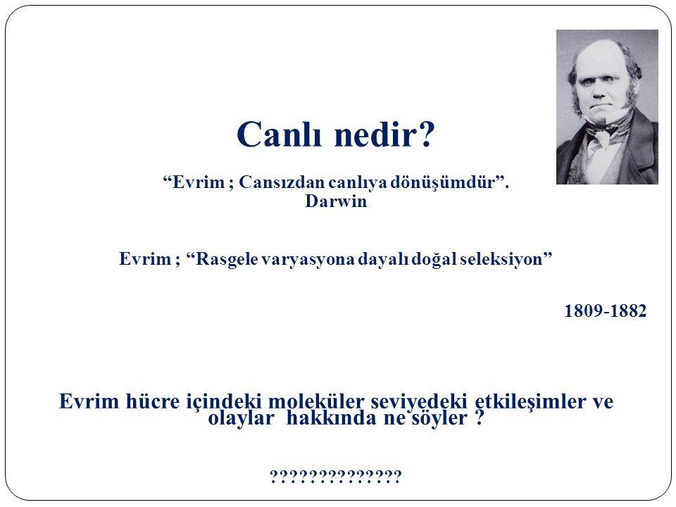 """Canlı nedir? """"Evrim ; Cansızdan canlıya dönüşümdür"""". Darwin Evrim ; """"Rasgele varyasyona dayalı doğal seleksiyon"""" 1809-1882 Evrim hücre içindeki molekü"""